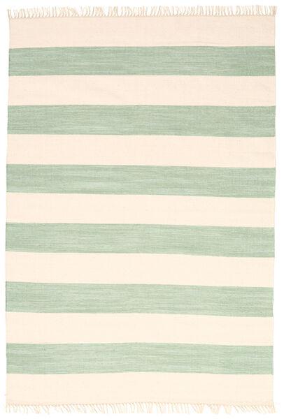 Cotton stripe - Mint teppe CVD4924