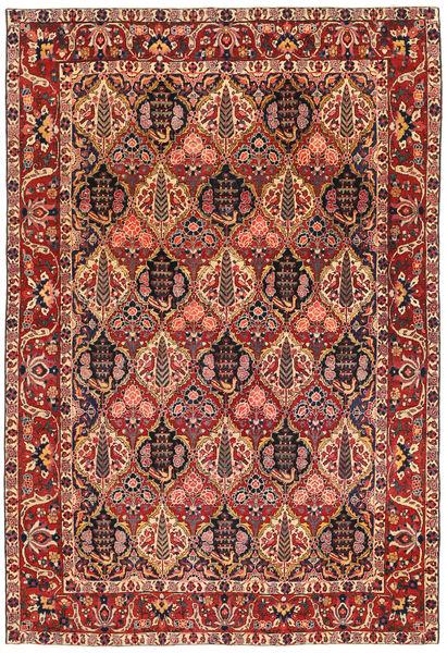Bakhtiar Patina Matto 208X308 Itämainen Käsinsolmittu Ruskea/Vaaleanruskea (Villa, Persia/Iran)