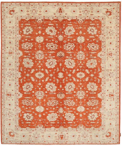 Ziegler Matta 239X289 Äkta Orientalisk Handknuten Ljusbrun/Roströd (Ull, Pakistan)