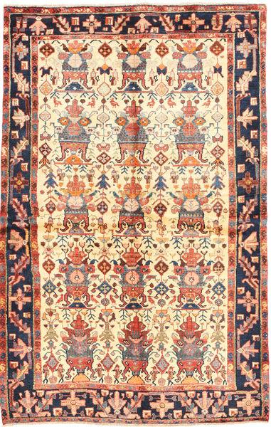 Nahavand szőnyeg AXVZL4233