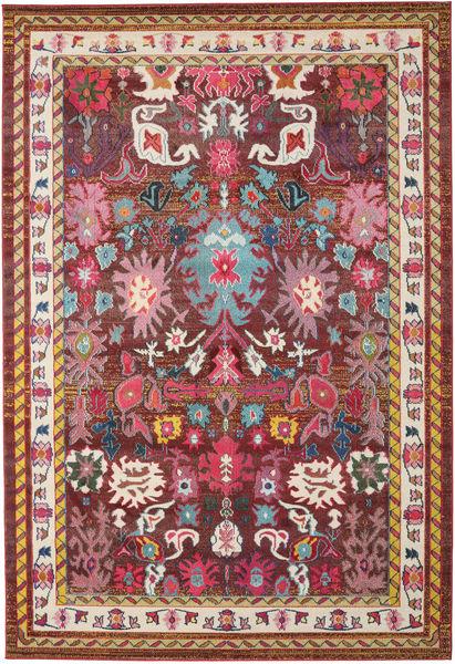 Mirzam - Scuro Porpora Tappeto 240X340 Moderno Rosso Scuro/Marrone ( Turchia)