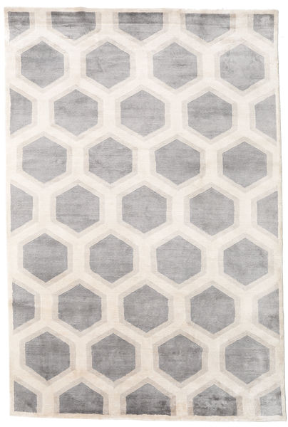 Lounge Rug 200X300 Authentic  Modern Handknotted White/Creme/Light Grey ( India)