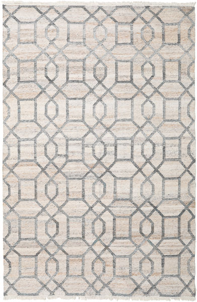 Tracy Rug 200X300 Authentic  Modern Handwoven Light Grey/White/Creme ( India)