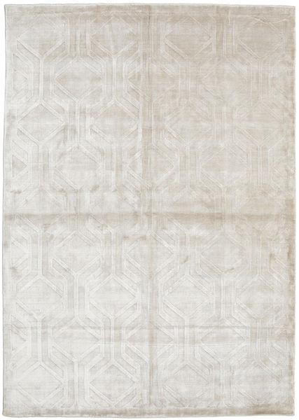Viskoosi Moderni Matto 170X240 Moderni Käsinsolmittu Vaaleanharmaa/Tummanbeige ( Intia)