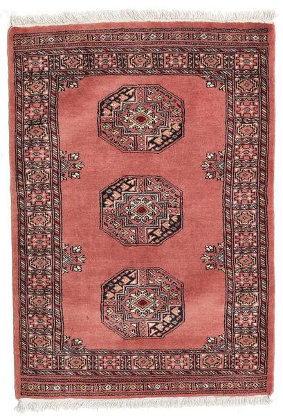 Pakistan Bokhara 3ply carpet RXZU425