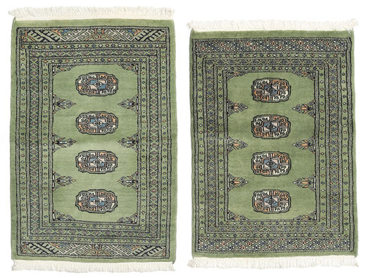 Pakistan Bokhara 2ply carpet RXZU18