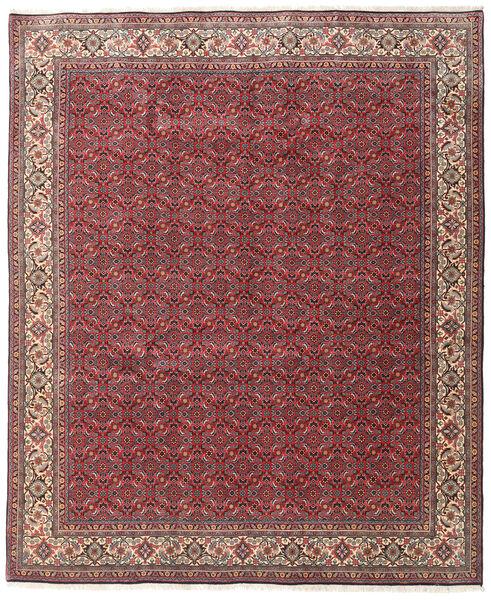 Bidjar Zandjan Vloerkleed 245X300 Echt Oosters Handgeknoopt Donkerrood/Donkergrijs (Wol, Perzië/Iran)