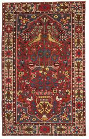 Bakhtiari Patina carpet EXO14