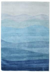 Feeling - Blue carpet CVD1329