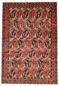 Afshar tapijt EXV335