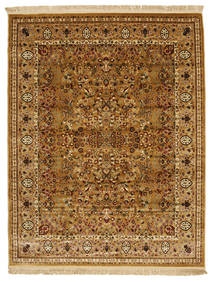 Kerman Diba - Brown rug RVD7174