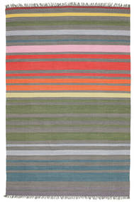 Rainbow Stripe - Grey Rug 200X300 Authentic  Modern Handwoven Light Grey/Dark Grey (Cotton, India)