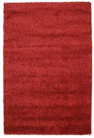 Shaggy Solana - Red carpet CVD7238