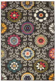 Serena - Brown / Grey rug RVD8468