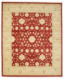 Farahan Ziegler - Punainen-matto RVD9688