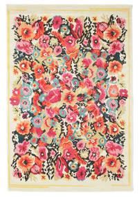 Rochester rug RVD9416