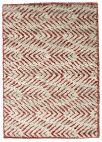 Shaggy Ashley - Red carpet CVD10274