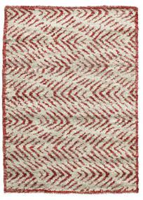Shaggy Ashley - Red carpet RVD10275