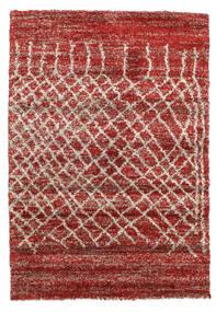 Shaggy Fenix - Red carpet RVD10299