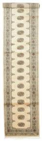 Pakistan Bokhara 3ply tapijt RZZZK265