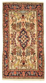 Senneh szőnyeg EXZO608