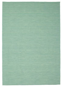 Kilim loom - Mint Green carpet CVD8679