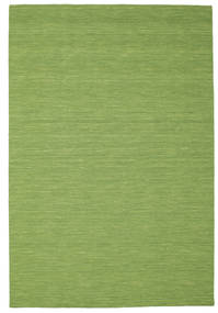Kilim Loom - Green Rug 200X300 Authentic  Modern Handwoven Olive Green/Light Green (Wool, India)