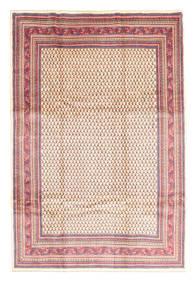 サルーク 絨毯 EXZR1528