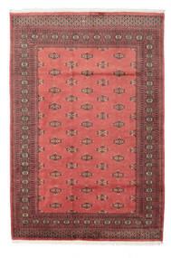 Dywan Pakistański Bucharski 2ply RZZAE185