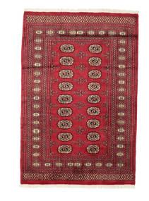 Pakistan Bokhara 2ply tapijt RZZAF956
