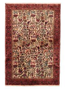 Rudbar Teppich VEXZL445