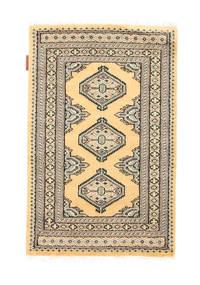 Pakistan Bokhara 2ply carpet NAS533