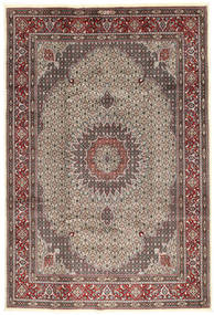 Moud Sherkat Farsh carpet TBHB91