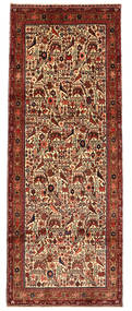 Rudbar carpet XVZR1486