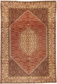 Bidjar carpet MXE33