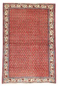 サルーク 絨毯 MXE513