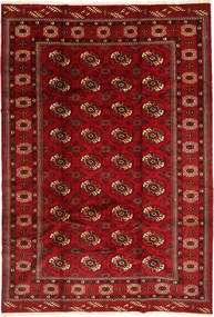 Turkaman Matta 203X296 Äkta Orientalisk Handknuten Mörkröd (Ull, Persien/Iran)