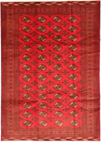Turkaman matta RXZC104