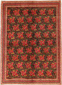 アフシャル 絨毯 NAZA8