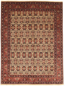 Bidjar Takab/Bukan Rug 255X351 Authentic  Oriental Handknotted Dark Brown/Brown Large (Wool, Persia/Iran)
