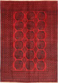Afghan Khal Mohammadi carpet ANI161