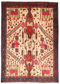 Afshar carpet NAZA10
