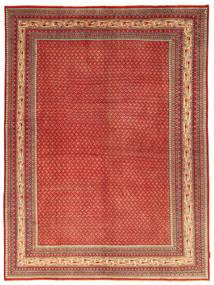 サルーク 絨毯 NAZA1158