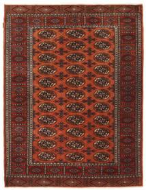 Turkaman Teppich NAZA1248