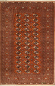 Turkaman Teppich GHI139