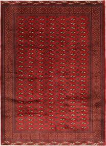 Turkaman Teppich RXZD98