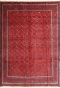 アフガン アルサリ 絨毯 AXVA145