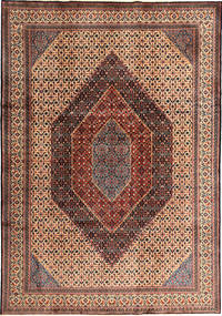 Moud carpet AXVG227