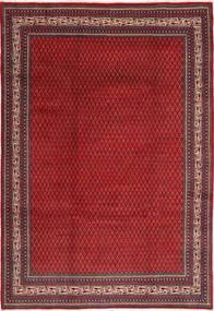 サルーク 絨毯 TBZW196