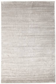 Bamboo Silk Loom - Warm Grey Rug 200X300 Modern Light Grey ( India)